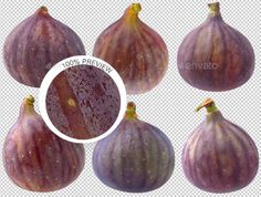 Collection of Isolated Fresh Figs