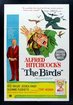 The Birds directed by Alfred Hitchcock, written by Evan Hunter, Best Movie Posters, Horror Movie Posters, Movie Poster Art, Film Posters, Outer Space Movies, The Birds Movie, Alfred Hitchcock The Birds, Jessica Tandy, Bugs Bunny Cartoons