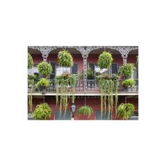 Architecture, French Quarter, New Orleans, Louisiana, USA Photographic... ($40) ❤ liked on Polyvore featuring home, home decor, wall art, new orleans wall art, photography wall art, new orleans posters, photography posters and photographic wall art