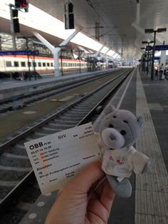 Dr. Bear is excited to take a train ride from Salzburg into the Alps!