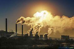Insalubridad del medio ambiente: asesina implacable