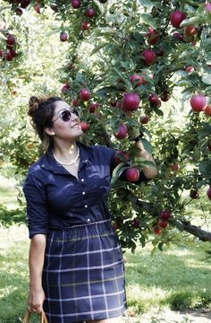 Apple picking season