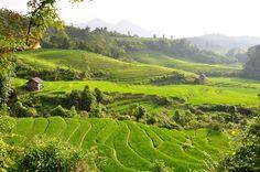 2aec23a26 45 best Sapa Vietnam images in 2017 | Landscape, Landscapes, Paisajes