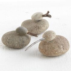 Rock Ducks | Changing My Marbles | www.changingmymarbles.wordpress.com