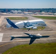 First flight done! What is your opinion about this new Beluga? Airbus Beluga XL landing at Toulouse Blagnac intl. Airport after the first test flight Photographer Civil Aviation, Aviation Art, Aviation News, Airbus Beluga, Avion Cargo, Helicopter Plane, Airplane Photography, Food Photography, Passenger Aircraft