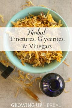 Learn the differences in herbal tinctures, glycerites, and vinegars in today's How To Start Using Herbs post as well as how to make and use them to keep your family naturally healthy!