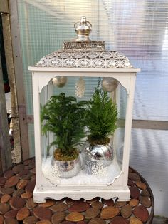 Add a few items at the top of your container to create a winter wonderland look Sprays, Terrarium, Winter Wonderland, Container, Texture, Create, Christmas, Top, Color