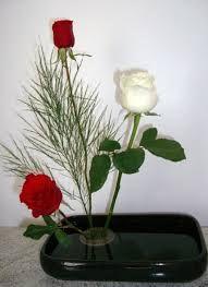 Fonte de energia: Ikebana Sanguetsu - A energia das flores.
