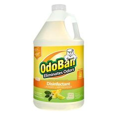 OdoBan 1 Gal. Citrus Odor Eliminator and Disinfectant Multi-Purpose Cleaner Concentrate-911661-G - The Home Depot