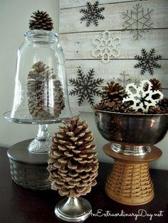 Need a cloche - repurpose a vase.  Cloche and Pine Cone Winter Vignette :: AnExtraordinaryDay.net