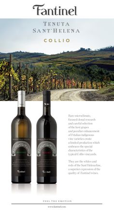 Fantinel Tenuta Sant'Helena Wines: a superior expression of quality. Wineries, The Selection, Vineyard, Good Things, Italy, Drinks, Bottle, Drinking, Wine Cellars