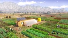 """The """"Farm in a Box"""" Delivers Modern Agriculture To Places That Need It Agriculture Durable, Agriculture Bio, Modern Agriculture, The Farm, Small Farm, Sustainable Farming, Urban Farming, Sustainability, Farming Technology"""