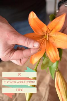 Speaking of flowers, get a high-budget look for less when you arrange grocery store flowers yourself. Use these tricks from the pros --> http://www.hgtv.com/design/make-and-celebrate/handmade/1/flower-arranging-tips?soc=shpinparty