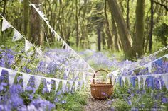Stock Photo - Vintage bunting and wicker basket along a path in Dorset springtime bluebell woodland, England, UK Woodland Wedding Venues, Wedding Bunting, Woodland Theme, Wedding Ideas, Rustic Weddings, Wedding Themes, Wedding Stuff, Wedding Planning, Garden Bunting