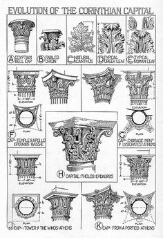Architectural Orders: Corinthian order: reconstruction details, various views of different Corinthian capital details Architecture Antique, Roman Architecture, Classic Architecture, Architecture Portfolio, Architecture Drawings, Historical Architecture, Architecture Details, Sustainable Architecture, Byzantine Architecture