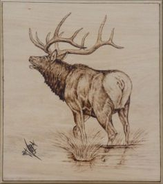 I wish I was this good at my woodburning.  Something to strive for though!