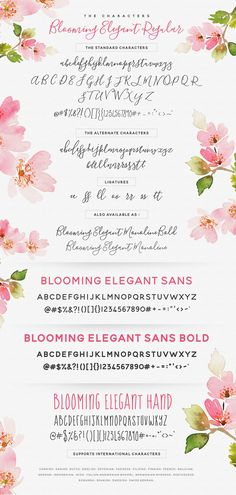 The Blooming Elegant Font Trio by Nicky Laatz on Creative Market