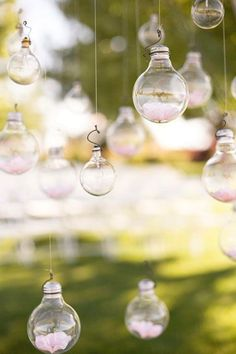 Really cute idea - fill these bulbs with anything you wish! Also, make use of your surroundings...hang things on trees for a more natural look!