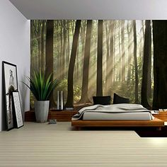 Wall26® - A Landscape Mural of the Sun Peaking Through Th... https://smile.amazon.com/dp/B01BY438ZY/ref=cm_sw_r_pi_dp_x_Lt.DybAEP8QDQ
