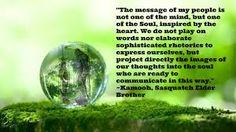 Resultado de imagem para messages from nature