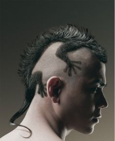 Funny Human Pictures » Lizard Haircut