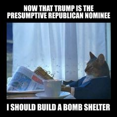 Now that Trump is the presumptive Republican nominee, I should build a bomb shelter. .