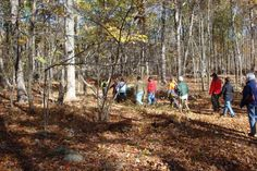 On October 23, 2016, Ashford Conservation Commission led a guided hike on the newly white blazed Langhammer trail on Ashford town land.