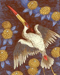 The Red Capped Japanese Stork flying at night. . . . . #illustration #Stork #birdart #naturalhistory #naturalhistoryart #natureillustration #birdillustration #Japanese #japaneseart #illustrationartists #ohhdeer #picamemag #inspiredbynature