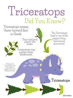 So cute in a dinosaur bedroom or in a classroom! Dinosaur Classroom, Dinosaur Theme Preschool, Dinosaur Activities, Indoor Activities For Kids, Classroom Fun, Kindergarten Activities, Dinosaur Party, Dinosaur Crafts, Preschool Learning