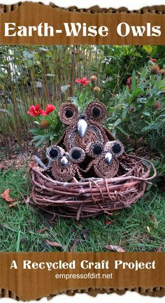 How cute are these? Earth-wise owls - a recycled craft project by www.empressofdirt...