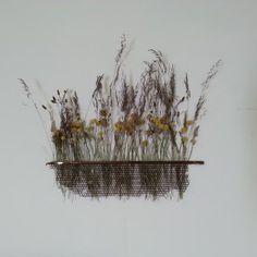 Pollination Harriet Goodall