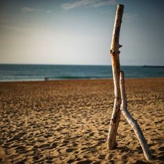 Totem  bord de mer  #jmvoge #shadow #light #sky #nomad #enjoylife #dream #photooftheday #mystery  #travel #hope #meeting #vision  #walking #texture #line #landscape #sea #mystery #totem #memories #hasselbladx1d #hasselbladholidays19 #hasselblad #hasselblad_official #noiphone  #fubiz #mediumformatmag #sand #beach Mystery Travel, Jean Michel, Sand Beach, Wind Turbine, Walking, Sky, Memories, Texture, Landscape