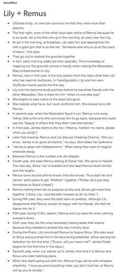 Lupin Harry Potter, Lily Potter, Harry Potter Ships, Harry Potter Marauders, Harry Potter Facts, Harry Potter Quotes, Harry Potter Love, James Potter, Harry Potter Universal