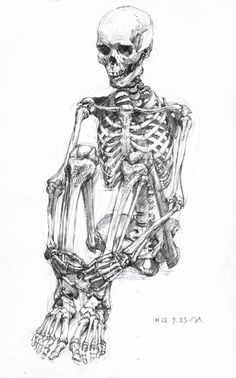 in these bodies we will live. in these bodies we will die. where you invest your love, you invest your life. - mumford and sons, awake my soul Anatomy For Artists, Anatomy Art, Anatomy Drawing, Human Anatomy, Anatomy Bones, Skeleton Drawings, Skeleton Art, Funny Skeleton, Skeleton Makeup