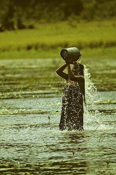 Woman washing - Sri Lanka 83 c Sri Lanka Photography, Travel Photography, Street Photography, Ceylon Sri Lanka, Half The Sky, Island Nations, City Beach, World Of Color, People Of The World