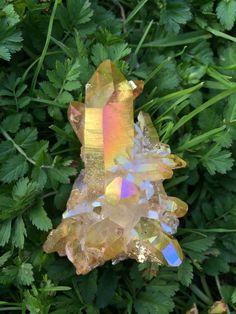 Sunset Aura Quartz Cluster Quartz Cluster, Minerals, Gems, Crystals, Pretty, Plants, Sunset, Color, Rhinestones
