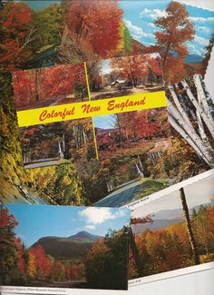 Colorful New England, Autumn landscapes Maine and New Hampshire vintage postcards