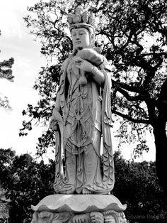 Bacalhôa Buddha Eden Buddha, Statue, Art, Victorian Paintings, Deities, Fotografia, Sculptures, Pictures, Art Background