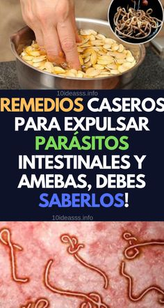 Parasito Intestinal Tacos Beef Health Recipes Healthy Drinks Health Tips Food Items Health Remedies Meat Dog Biscuit Recipes, Dog Treat Recipes, Healthy Recipes, Easter Crafts For Toddlers, Colon Health, Homemade Dog Treats, Keto Diet For Beginners, Food Items, Health Remedies