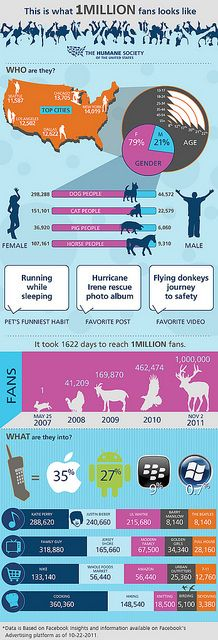 The Humane Society Infographic that they used when they hit $1 million fans