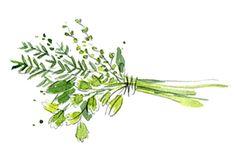 A BOUQUET GARNI Mini Pumpkins, Autumn Garden, Fall Harvest, Food Design, Picture Tattoos, Flower Arrangements, Bouquet, Herbs, Flowers