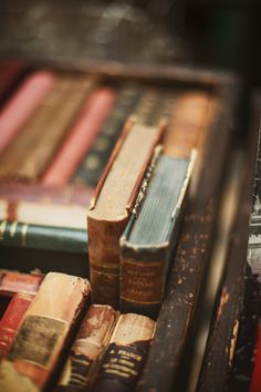 At Pretty Page Turner our favorite cover models are books. We can't get enough beautiful book photography of old books and their vintage bookshelf. Books Decor, Books Art, Old Books, Library Books, Antique Books, Art Antique, Reading Books, Ex Libris, I Love Books