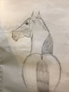 A drawing of a horse that I did