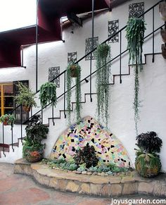 Do you love succulents? Enjoy this tour of Old Town San Diego, and the amazing variety of succulents throughout the town. Succulent Display, Succulent Wall, Succulent Plants, Cacti, Succulents In Containers, Planting Succulents, Old Town San Diego, Agaves, Container Gardening