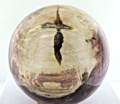 Natural Red 65mm Madagascar Petrified Wood Sphere Crystallized 358.3 grams Cross