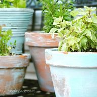 Lovely aged pots have me #itching4spring, but they can be pricey and h… :: Hometalk