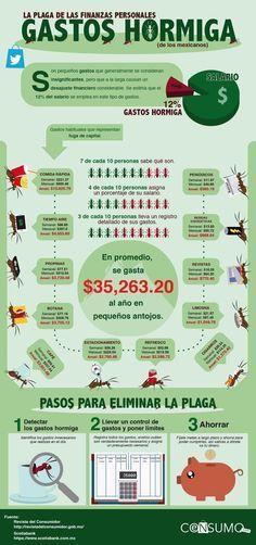 Gastos hormiga: la plaga de las finanzas personales