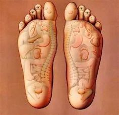 To receive the healing benefits of oil of Oregano, massage onto the soles of the feet. As reflexology has proven, massaging the soles of the feet can derive benefit to the body systems. Adding an essential oil to foot rubs has also been used traditionally for healing the mind and the body