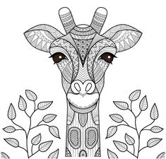 Ausmalbild Giraffe Zum Ausmalen Coloring Pinterest Mandalas