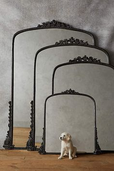 Gleaming Primrose Mirror - anthropologie.com If I had a larger space I would have this and the pupper